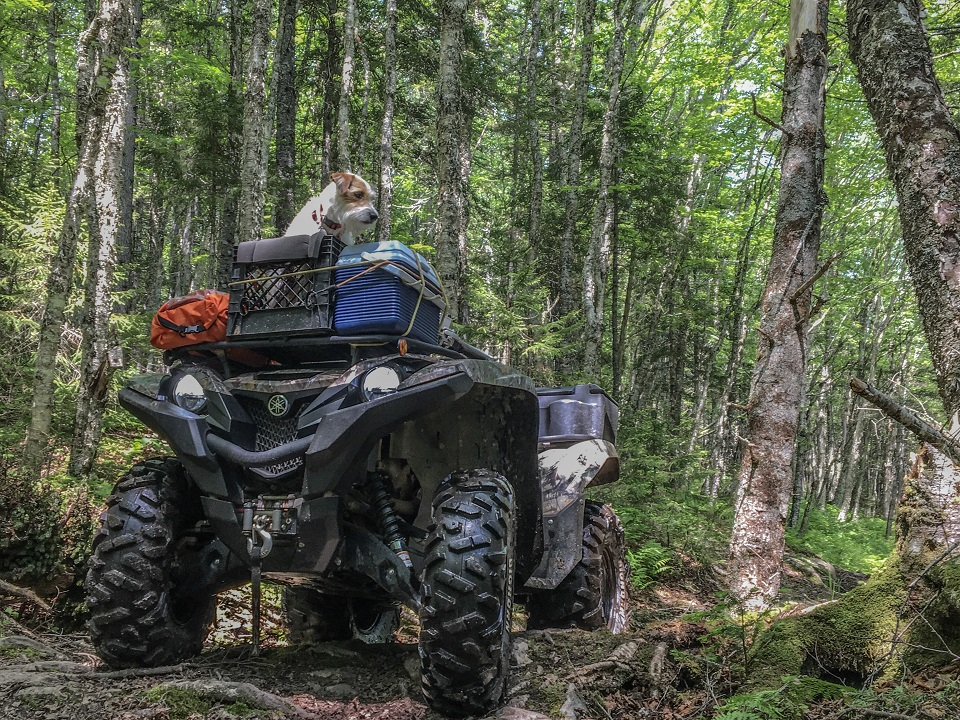 I don't have a KK yet but it sure would be a nice piece of kit. I like to go wild Camping with my dog Wendell, from my ATV and film it.  I do everything outdoors, ATV, camping, hiking, fishing, Moto vlog. My brother has a KK and I got to use it once and really loved it, boiled water in no time!