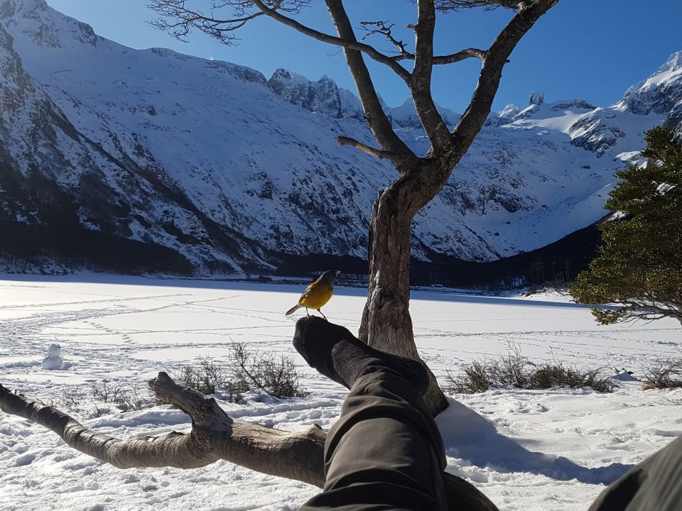 Alone at a frozen lake in the mountains of Patagonia, could only have been improved with a cuppa!