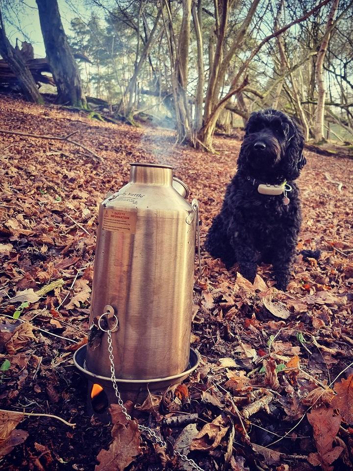 Cheeky cuppa in the woods with my mate Beano!  (Newbury, Berkshire, U.K.)