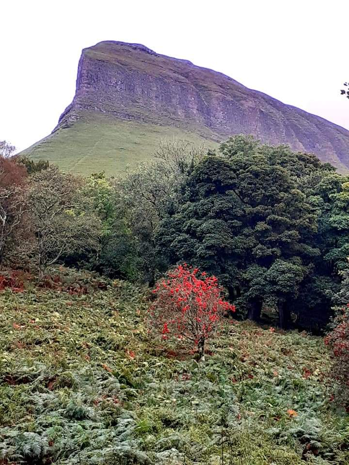 This picture is of the magnificent Benbulben County Sligo.We are eagerly awaiting delivery of our first Kelly kettle along with the ultimate scout kit. Myself and my Husband are keen outdoor enthusiasts and are planning an outing for our 24th wedding anniversary  on October 17th. So we bought it as a present to ourselves.  We are thinking of adding the base camp kettle for our Silver Wedding Anniversary next year, because it is silver coloured.
